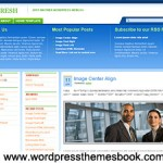 Free BizFresh wordpress theme