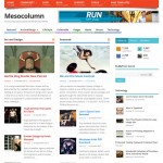 Mesocolumn Wordpress theme Free download